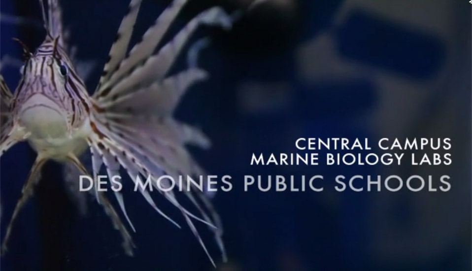 VIDEO: Central Campus Marine Biology Lab